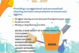 HOUSEHOLD CHEMICALS FOR SALE AT LOW COST